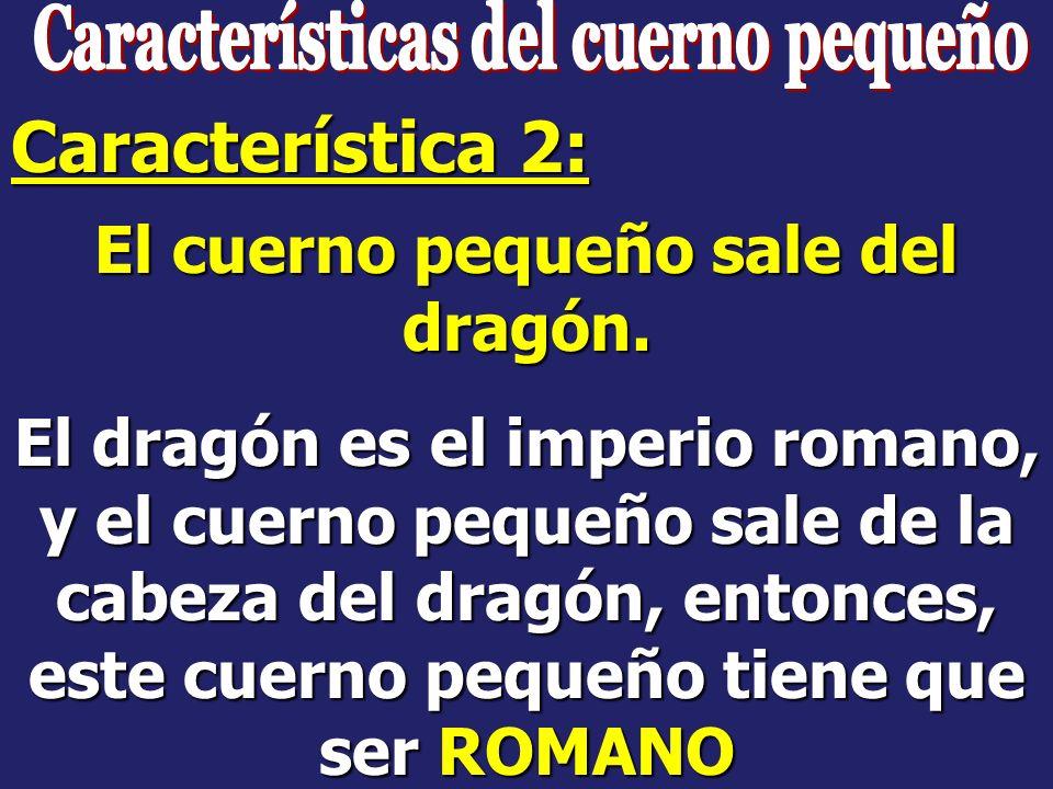 Características del cuerno pequeño El cuerno pequeño sale del dragón.