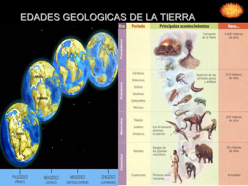 EDADES GEOLOGICAS DE LA TIERRA
