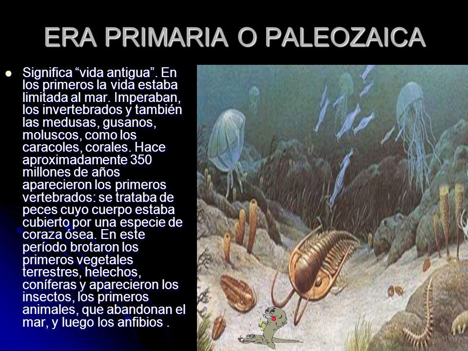ERA PRIMARIA O PALEOZAICA