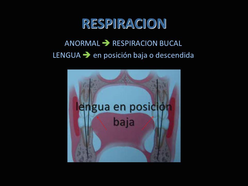 RESPIRACION ANORMAL  RESPIRACION BUCAL