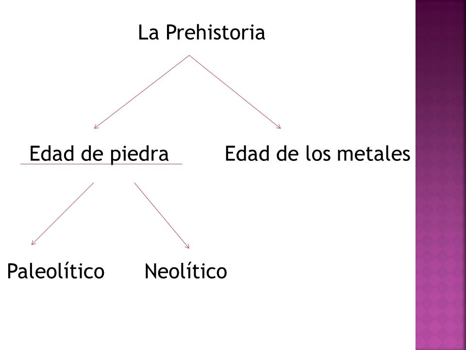 La Prehistoria Edad de piedra Edad de los metales Paleolítico Neolítico