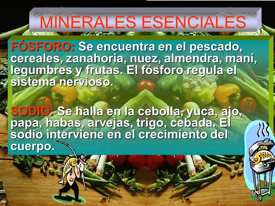 MINERALES ESENCIALES