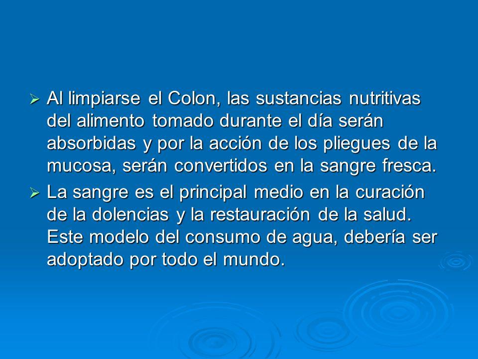 Al limpiarse el Colon, las sustancias nutritivas del alimento tomado durante el día serán absorbidas y por la acción de los pliegues de la mucosa, serán convertidos en la sangre fresca.