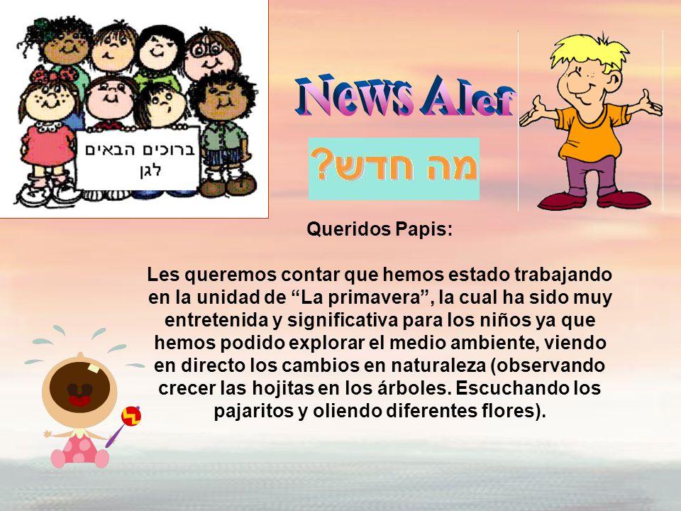 News Alef Queridos Papis: