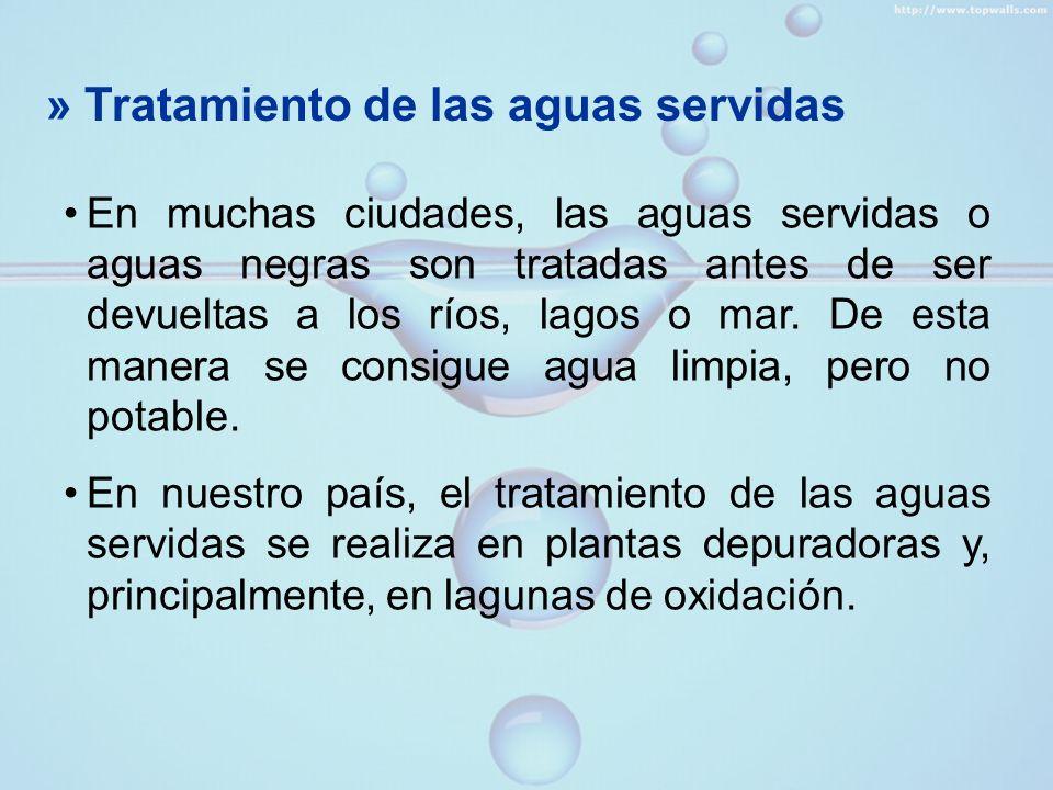» Tratamiento de las aguas servidas