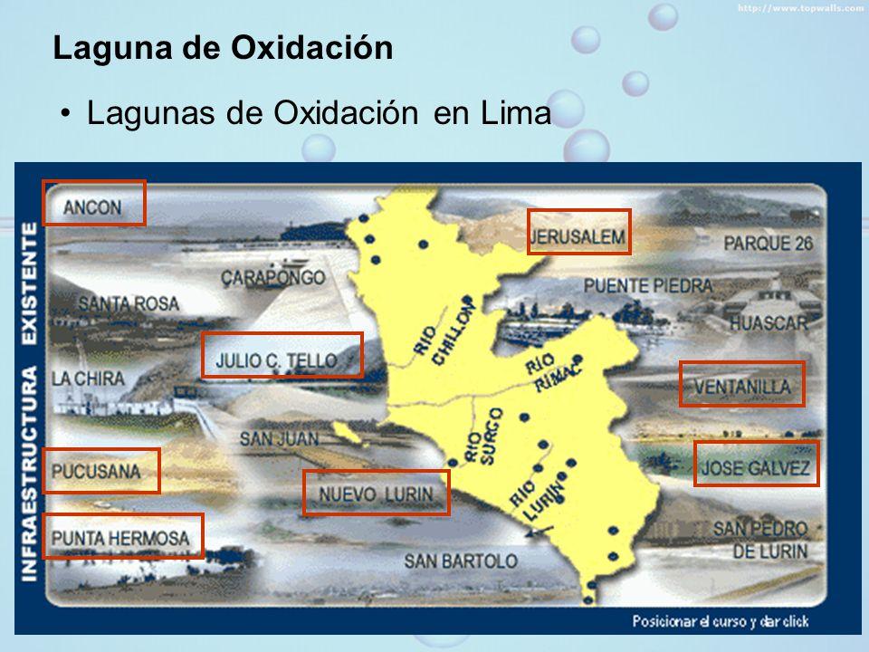 Laguna de Oxidación Lagunas de Oxidación en Lima