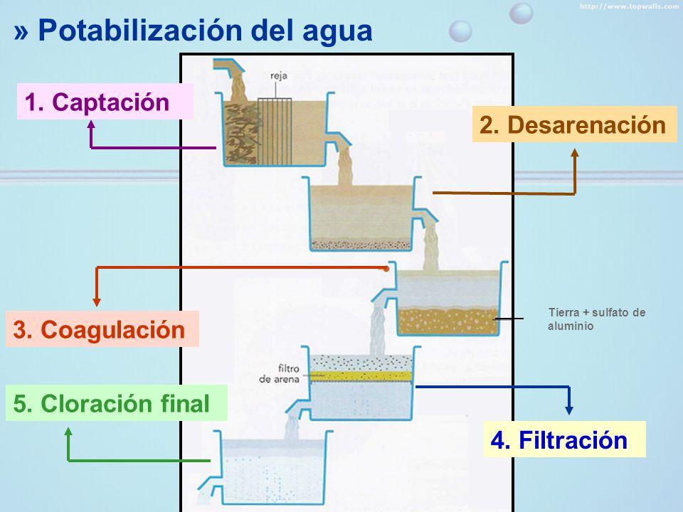 » Potabilización del agua