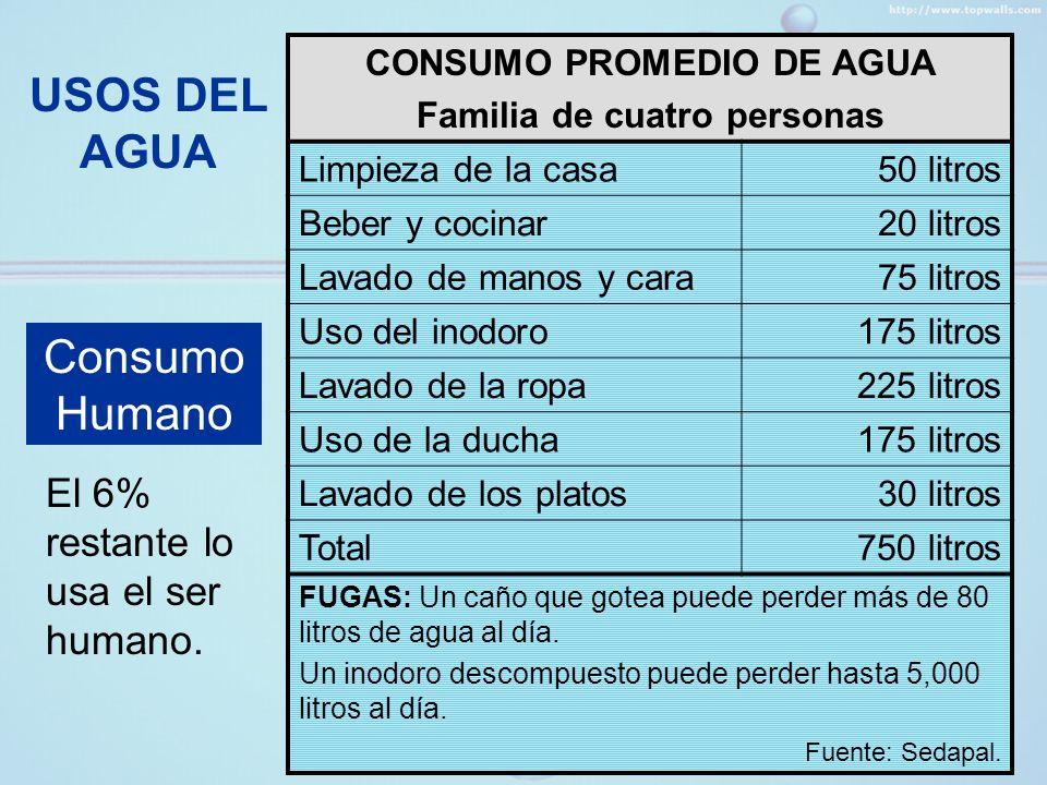 USOS DEL AGUA Consumo Humano El 6% restante lo usa el ser humano.