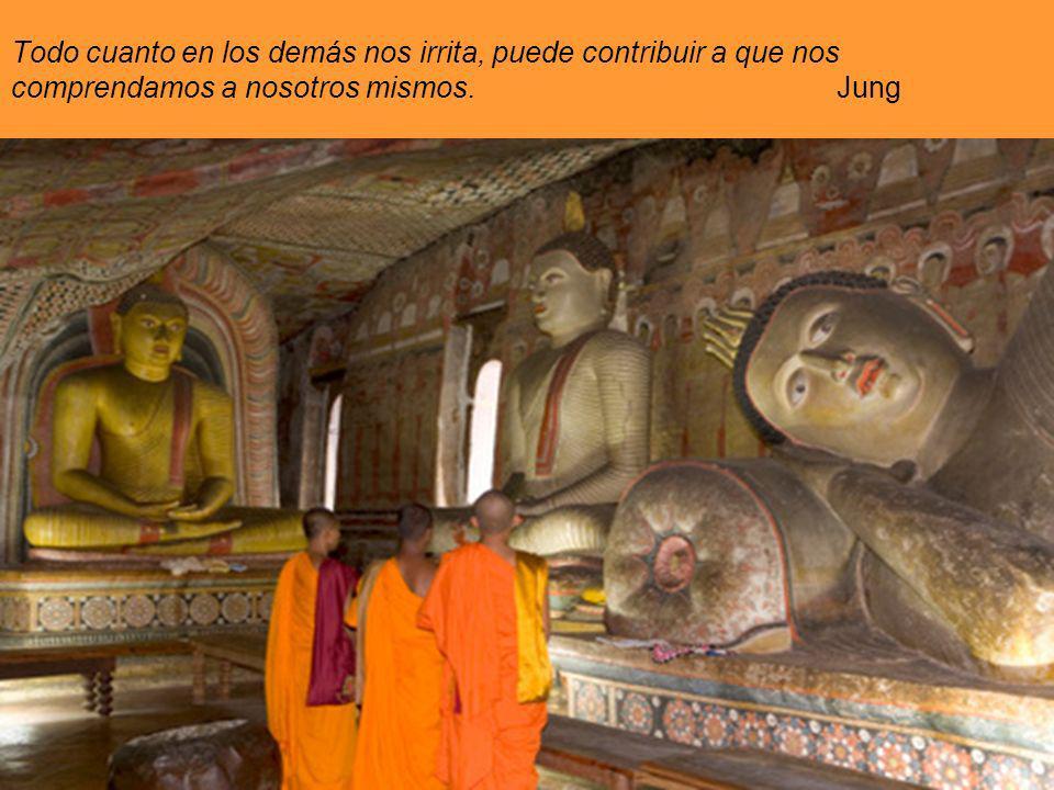 Todo cuanto en los demás nos irrita, puede contribuir a que nos comprendamos a nosotros mismos. Jung