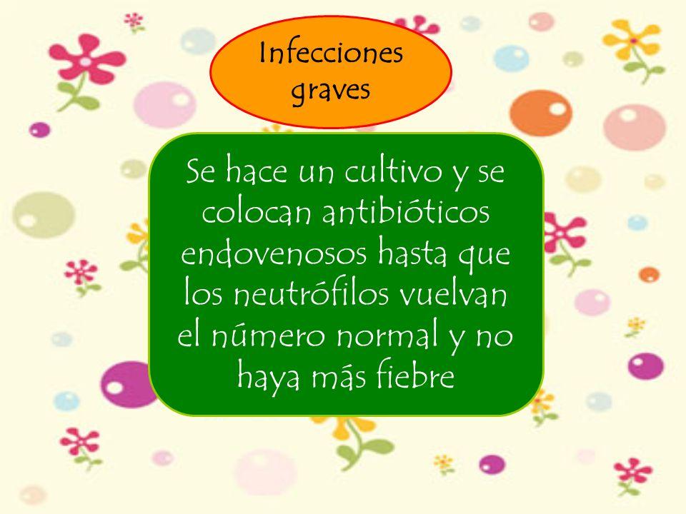 Infecciones graves Se hace un cultivo y se colocan antibióticos endovenosos hasta que los neutrófilos vuelvan el número normal y no haya más fiebre.