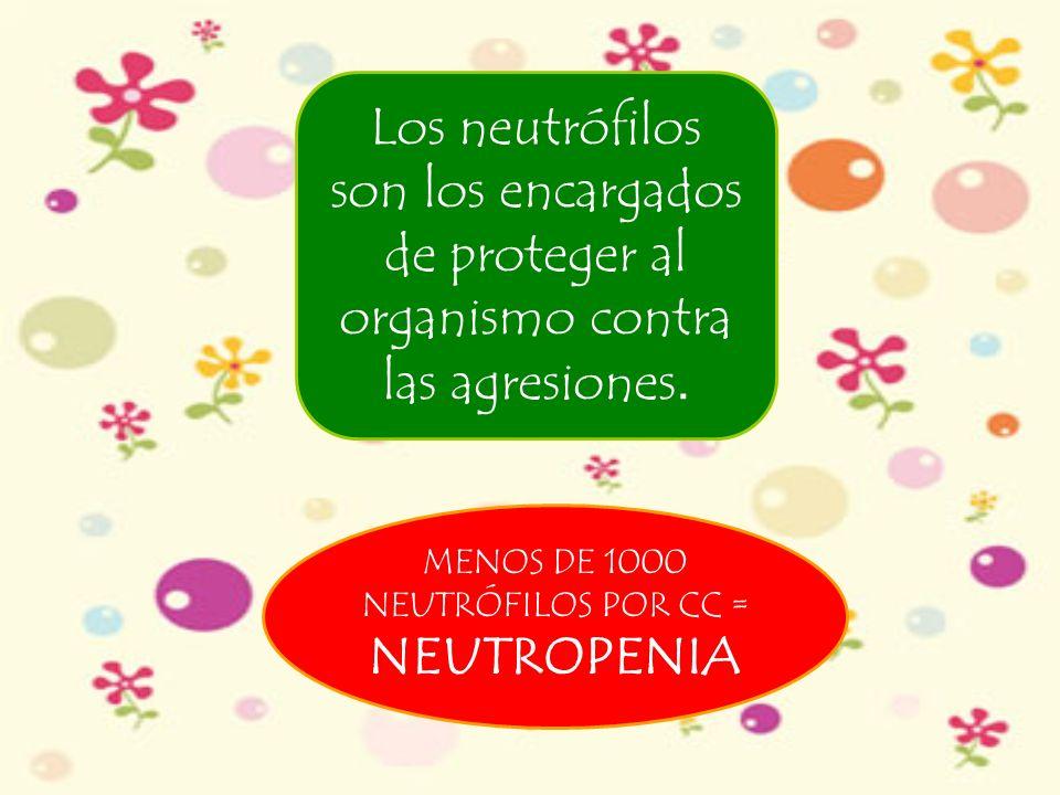 MENOS DE 1000 NEUTRÓFILOS POR CC = NEUTROPENIA