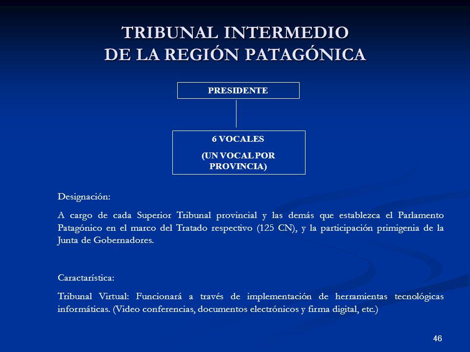 TRIBUNAL INTERMEDIO DE LA REGIÓN PATAGÓNICA
