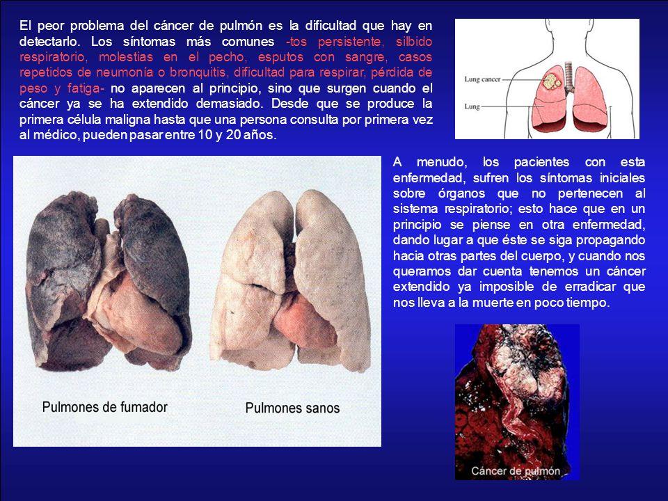 El peor problema del cáncer de pulmón es la dificultad que hay en detectarlo. Los síntomas más comunes -tos persistente, silbido respiratorio, molestias en el pecho, esputos con sangre, casos repetidos de neumonía o bronquitis, dificultad para respirar, pérdida de peso y fatiga- no aparecen al principio, sino que surgen cuando el cáncer ya se ha extendido demasiado. Desde que se produce la primera célula maligna hasta que una persona consulta por primera vez al médico, pueden pasar entre 10 y 20 años.