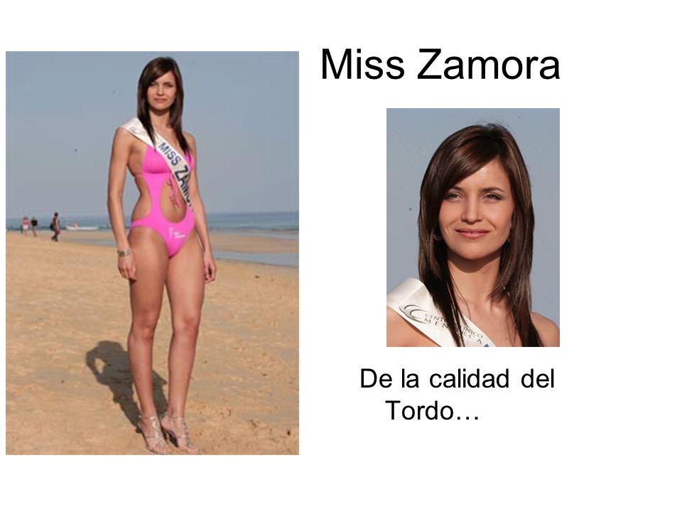 Miss Zamora De la calidad del Tordo…
