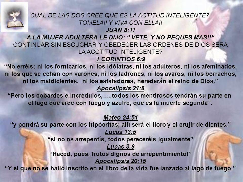 CUAL DE LAS DOS CREE QUE ES LA ACTITUD INTELIGENTE