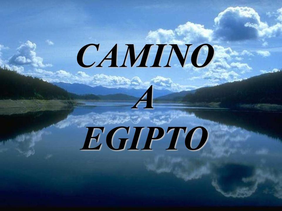 CAMINO A EGIPTO