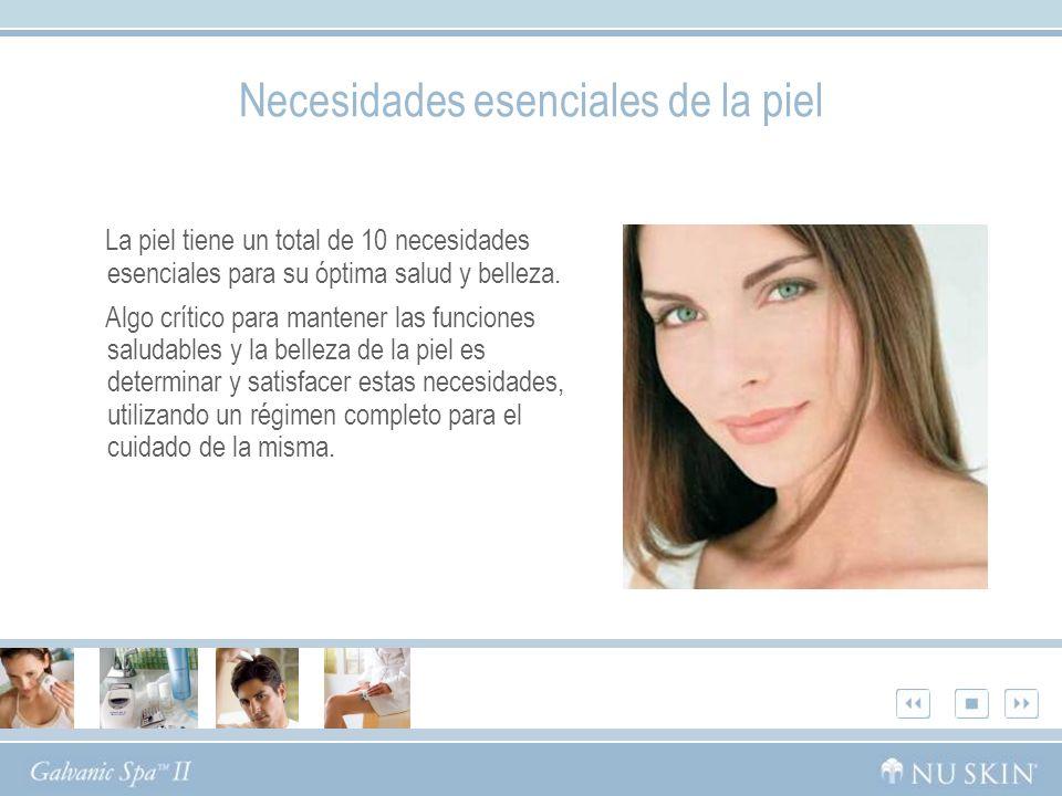 Necesidades esenciales de la piel
