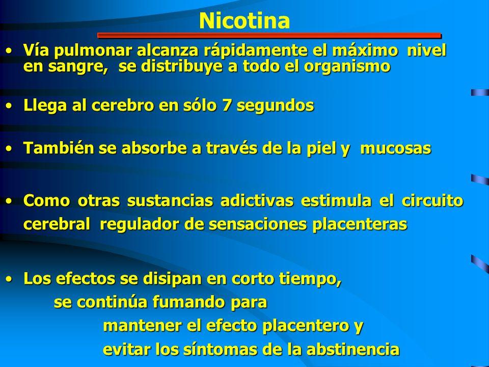 Nicotina Vía pulmonar alcanza rápidamente el máximo nivel en sangre, se distribuye a todo el organismo.