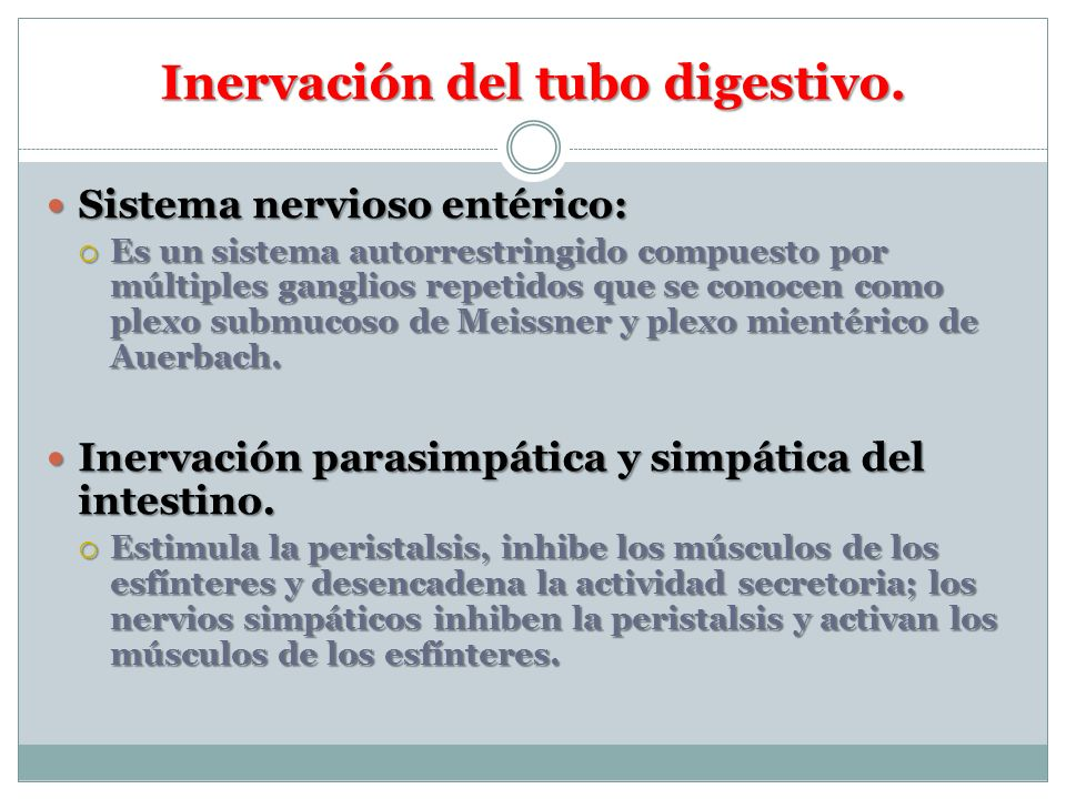 Inervación del tubo digestivo.
