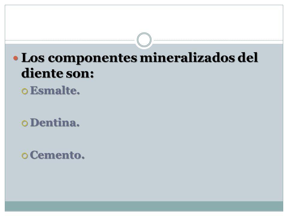 Los componentes mineralizados del diente son: