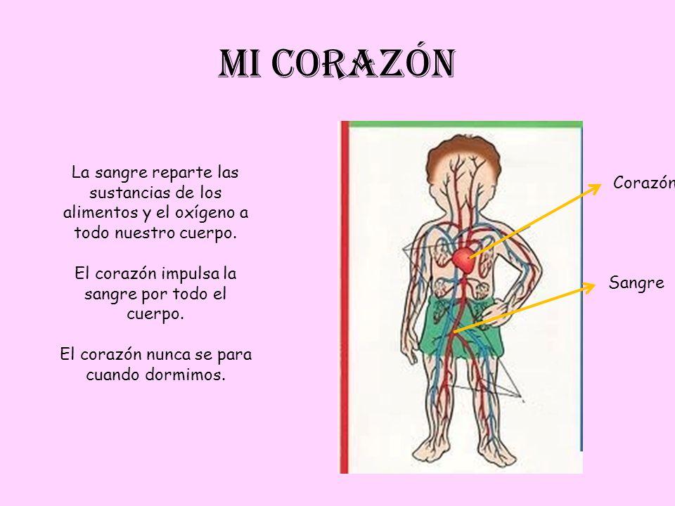 MI CORAZÓN La sangre reparte las sustancias de los alimentos y el oxígeno a todo nuestro cuerpo. El corazón impulsa la sangre por todo el cuerpo.