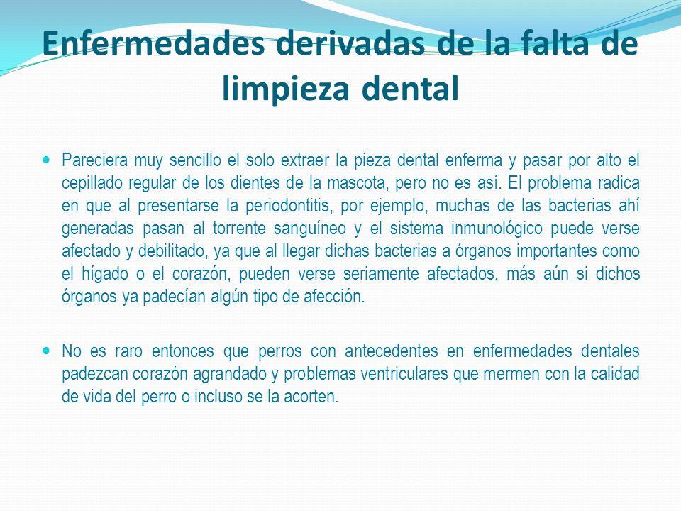 Enfermedades derivadas de la falta de limpieza dental