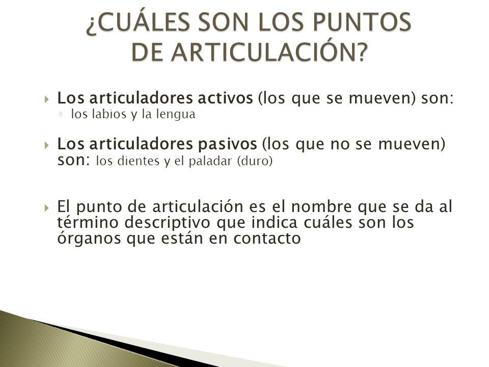 ¿CUÁLES SON LOS PUNTOS DE ARTICULACIÓN