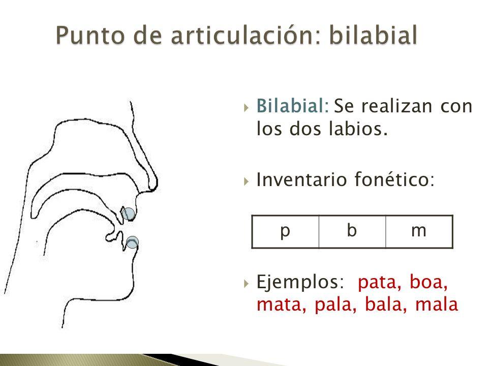 Punto de articulación: bilabial
