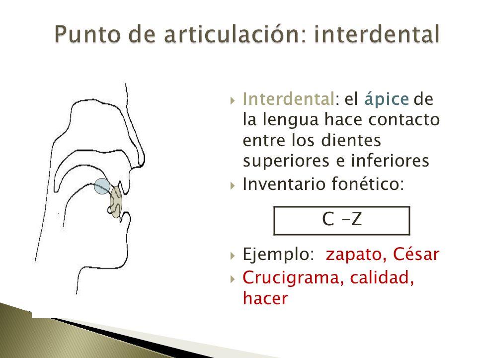 Punto de articulación: interdental
