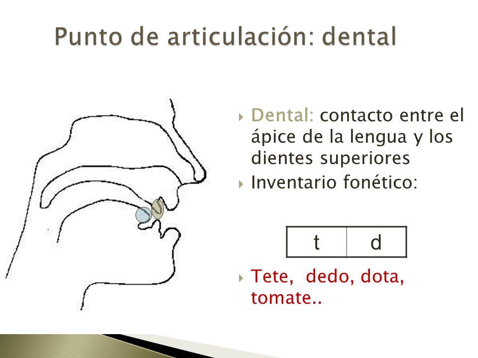Punto de articulación: dental