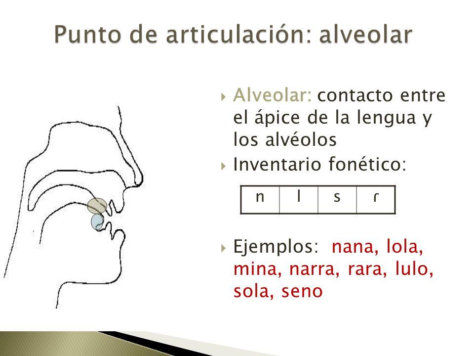 Punto de articulación: alveolar