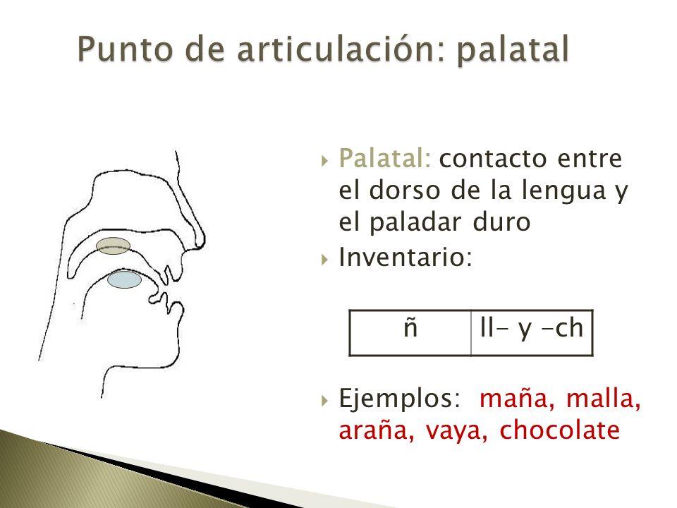 Punto de articulación: palatal