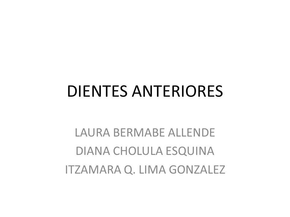 LAURA BERMABE ALLENDE DIANA CHOLULA ESQUINA ITZAMARA Q. LIMA GONZALEZ