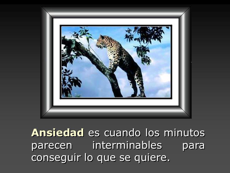 Ansiedad es cuando los minutos parecen interminables para conseguir lo que se quiere.