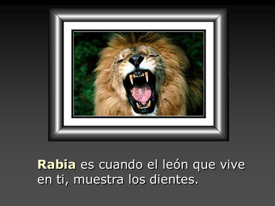 Rabia es cuando el león que vive en ti, muestra los dientes.