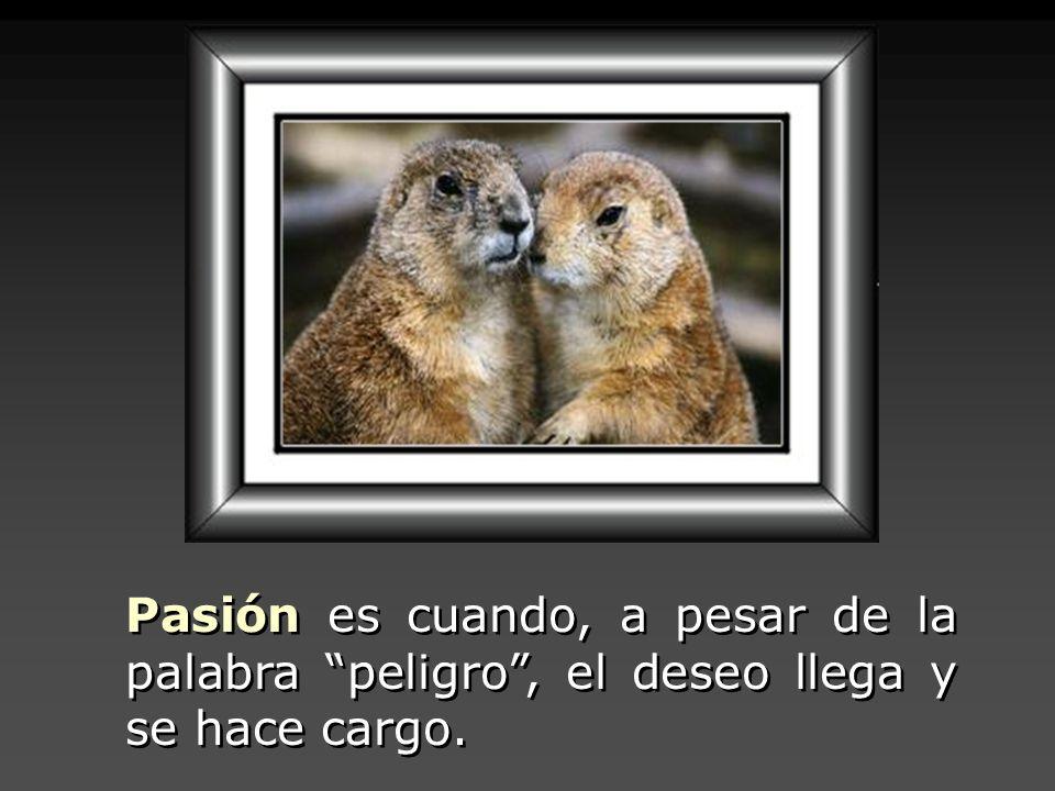 Pasión es cuando, a pesar de la palabra peligro , el deseo llega y se hace cargo.