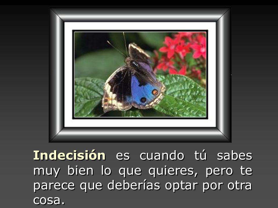 Indecisión es cuando tú sabes muy bien lo que quieres, pero te parece que deberías optar por otra cosa.