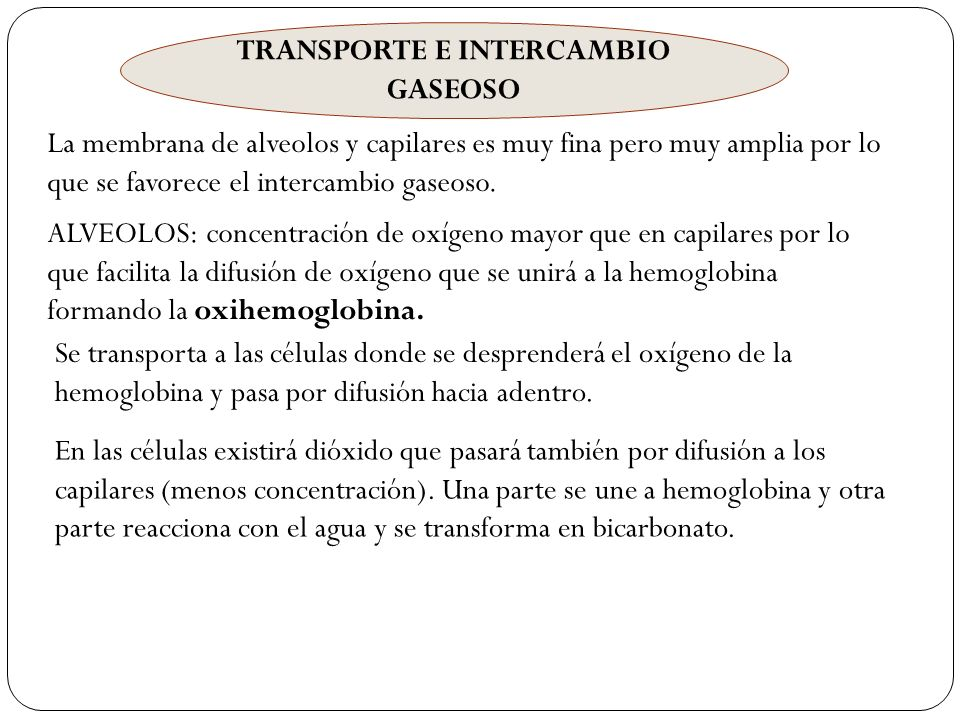 TRANSPORTE E INTERCAMBIO GASEOSO