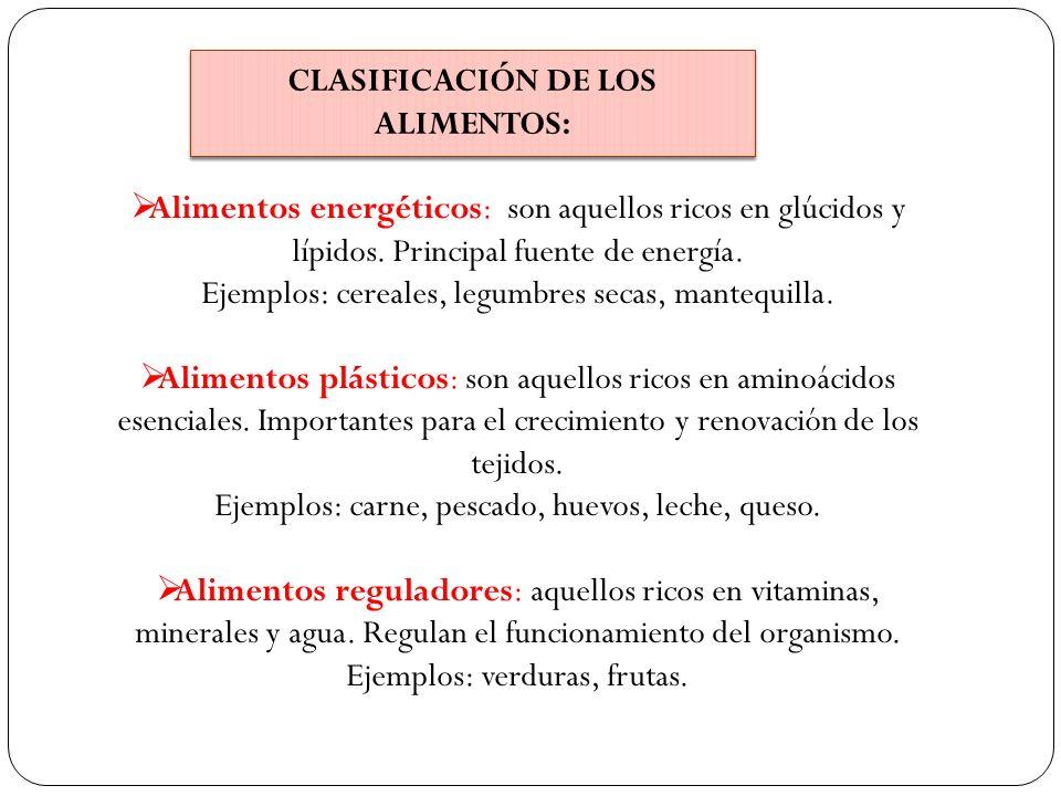CLASIFICACIÓN DE LOS ALIMENTOS:
