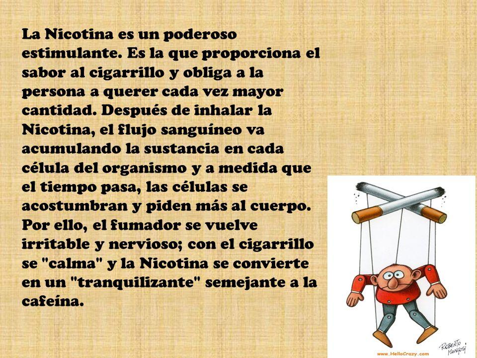 La Nicotina es un poderoso estimulante