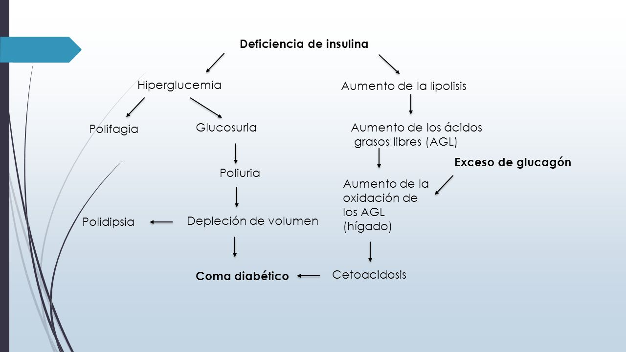 DIABETES MELLITUS BASES BIOQUIMICAS Y PATOLOGICAS - ppt