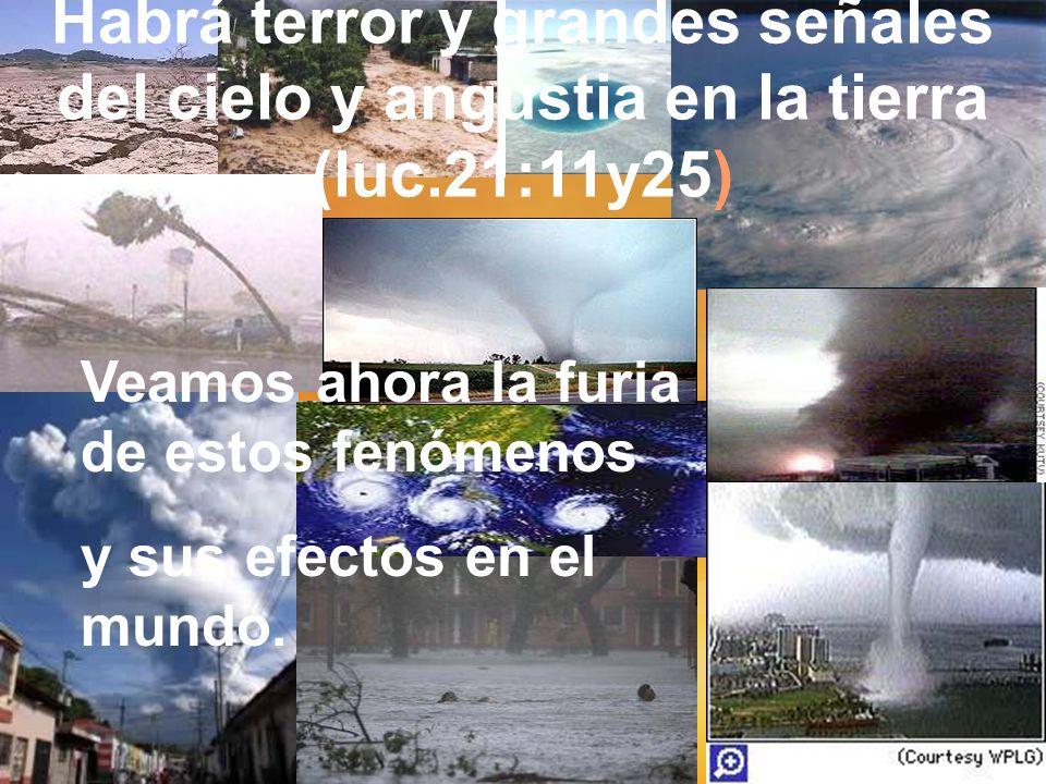 Habrá terror y grandes señales del cielo y angustia en la tierra (luc