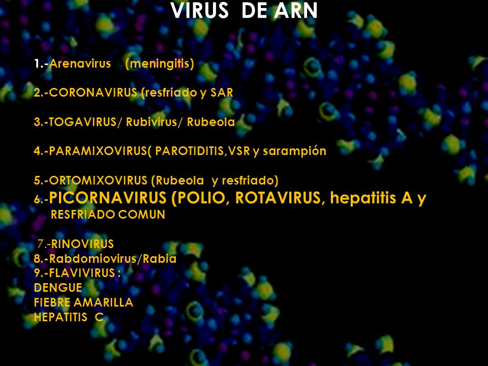VIRUS DE ARN 1.-Arenavirus (meningitis)