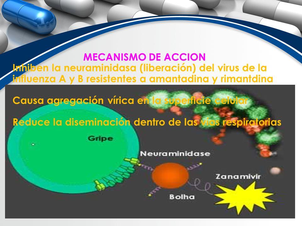 MECANISMO DE ACCION Inhiben la neuraminidasa (liberación) del virus de la. influenza A y B resistentes a amantadina y rimantdina.