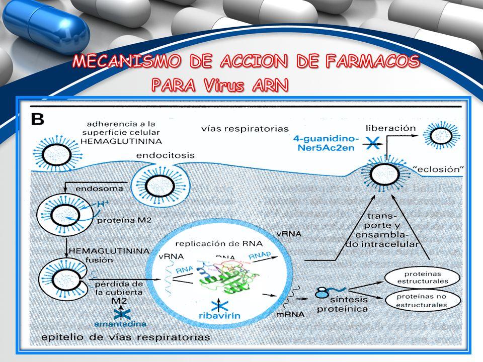 MECANISMO DE ACCION DE FARMACOS PARA Virus ARN