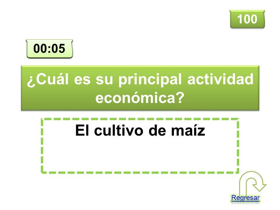 ¿Cuál es su principal actividad económica