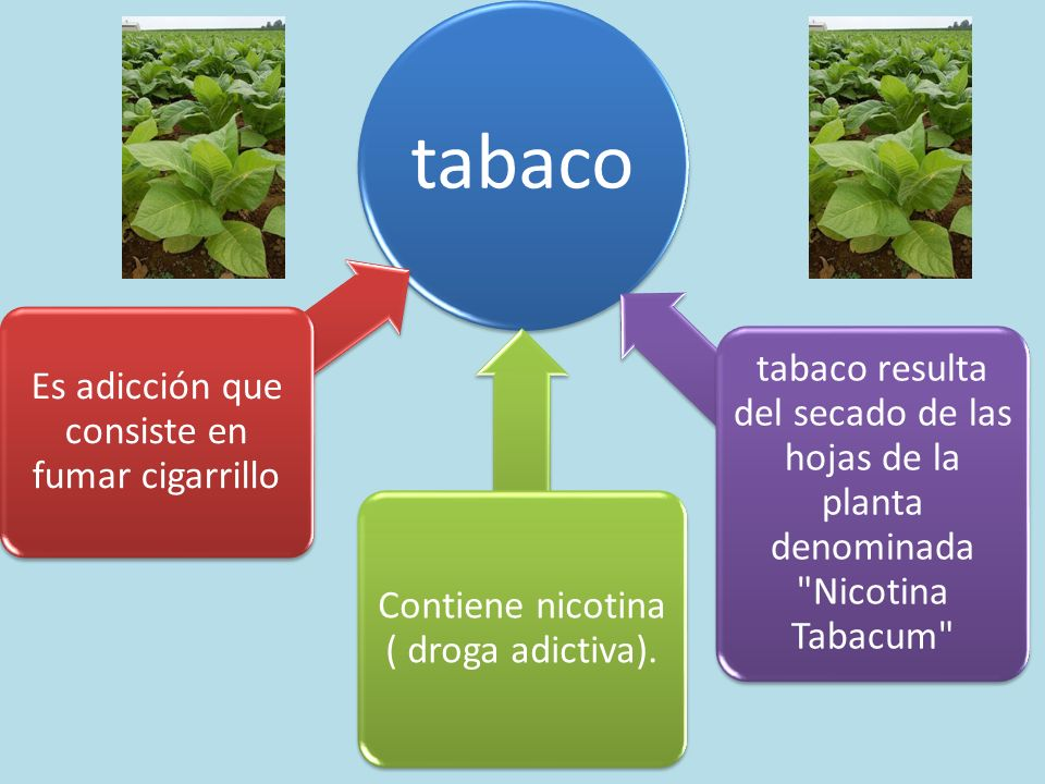 Es adicción que consiste en fumar cigarrillo