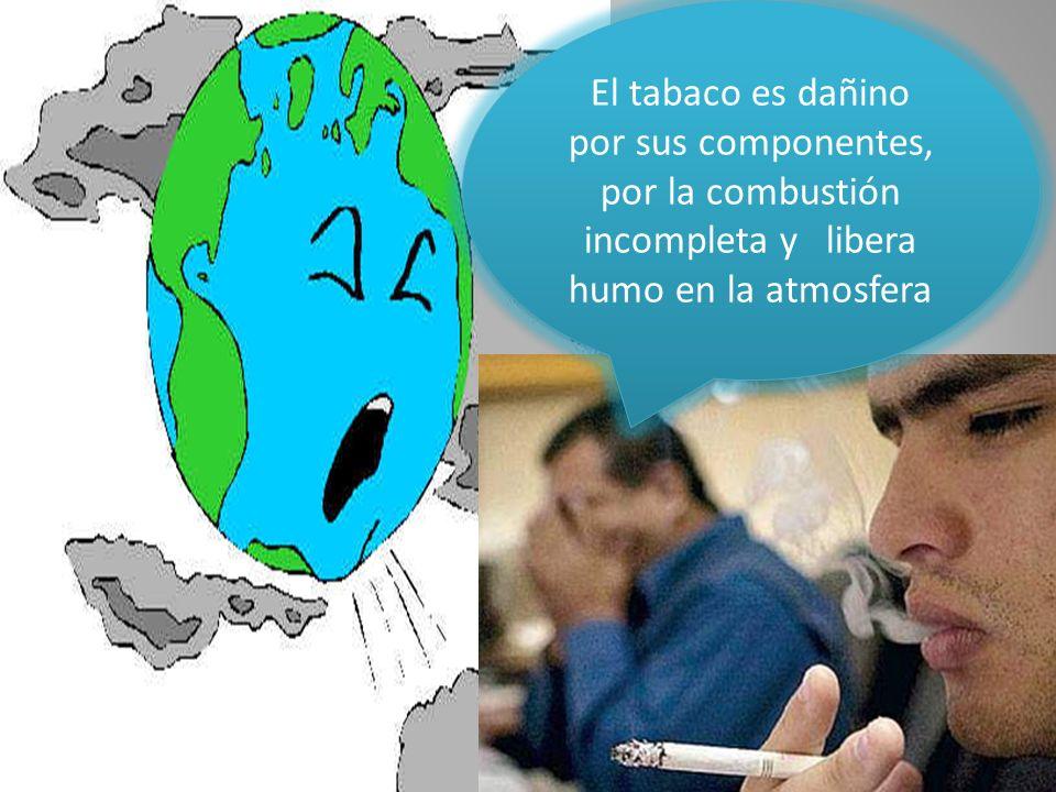 El tabaco es dañino por sus componentes, por la combustión incompleta y libera humo en la atmosfera