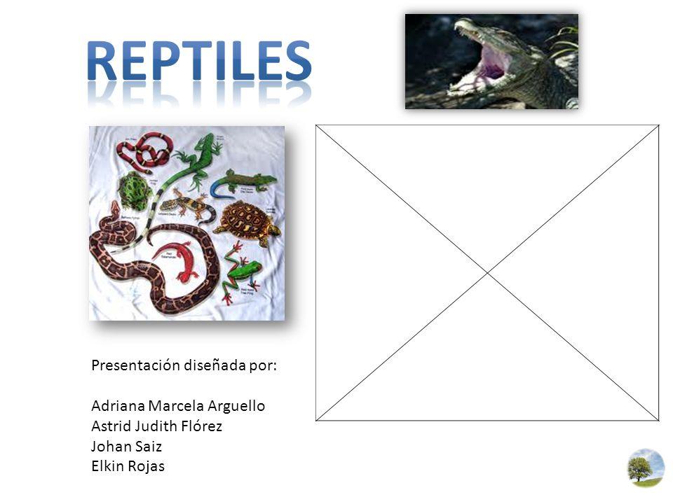 REPTILES Presentación diseñada por: Adriana Marcela Arguello
