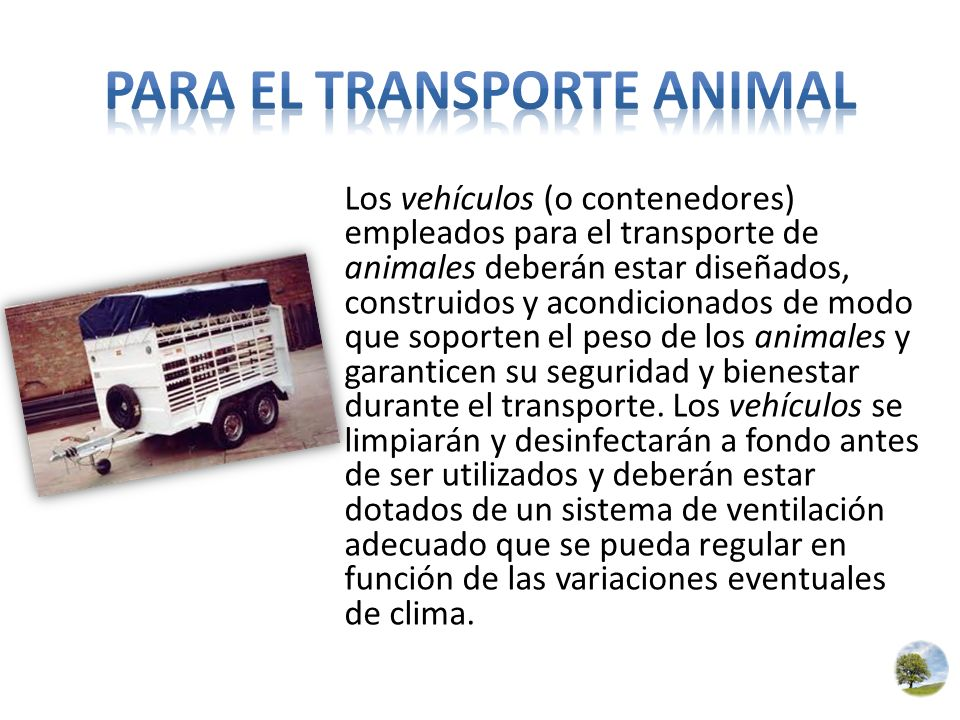 Para el transporte animal